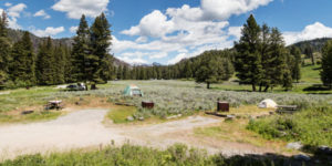 Slough Creek Campground