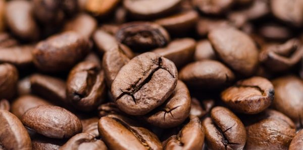 Coffee beans are either robusta or arabica