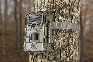 best inexpensive trail camera