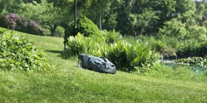 best robotic lawn mower for large lawns